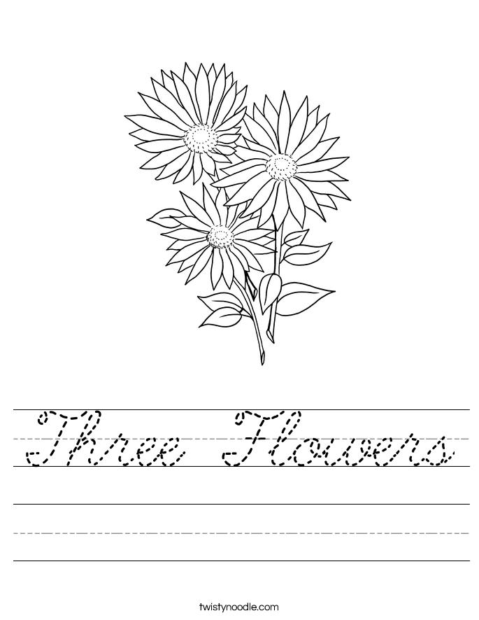 Three Flowers Worksheet