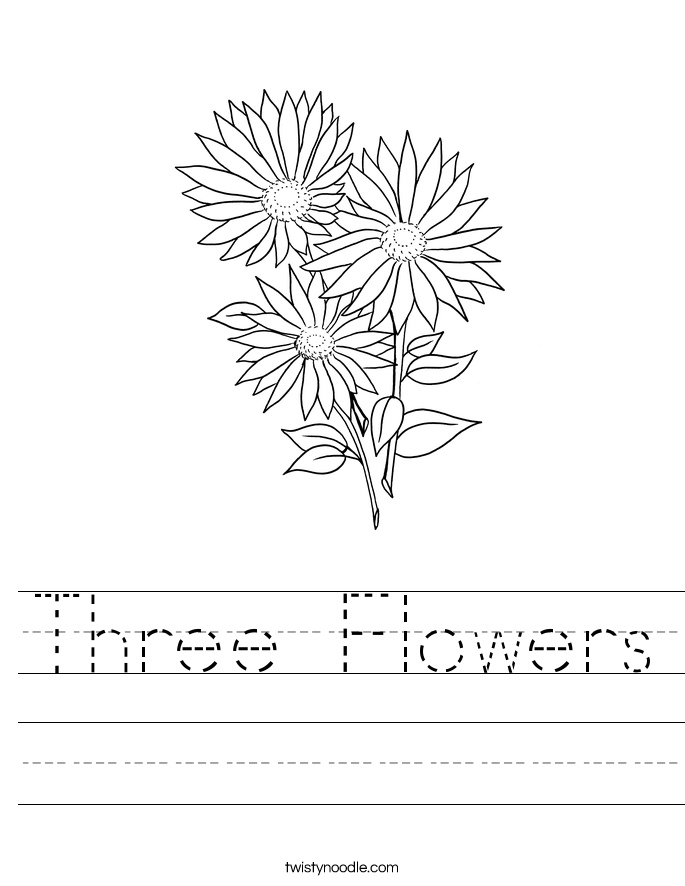 Three Flowers Worksheet