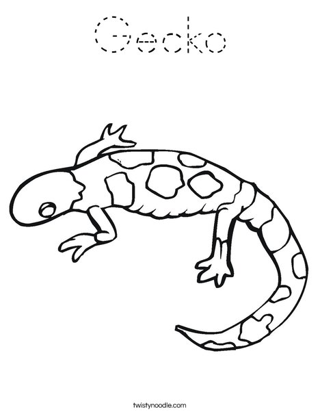 Gecko coloring page tracing twisty noodle for Gecko coloring pages