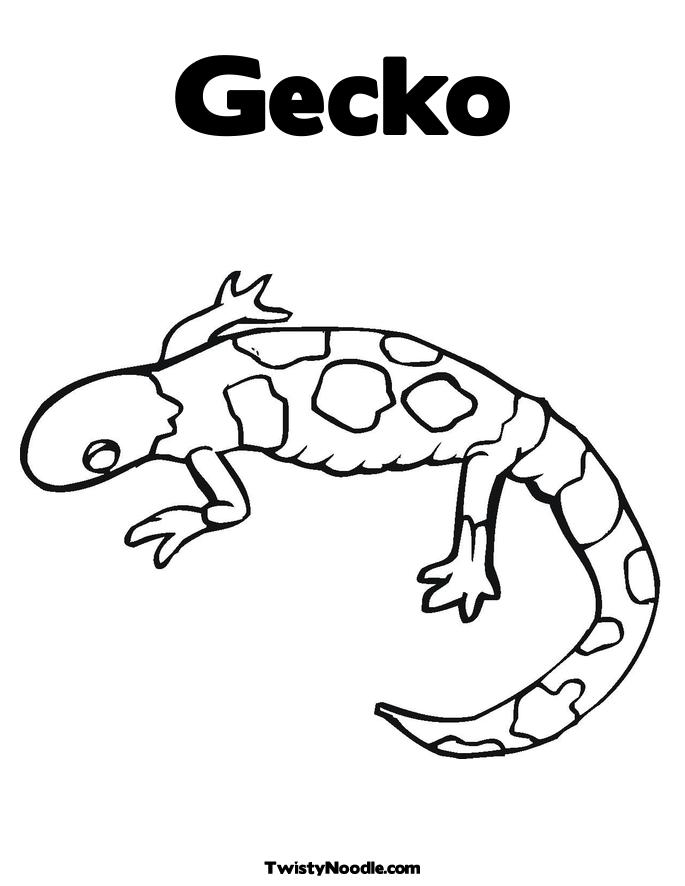 Free Coloring Pages Of Leopard Gecko Gecko Insect Coloring Page