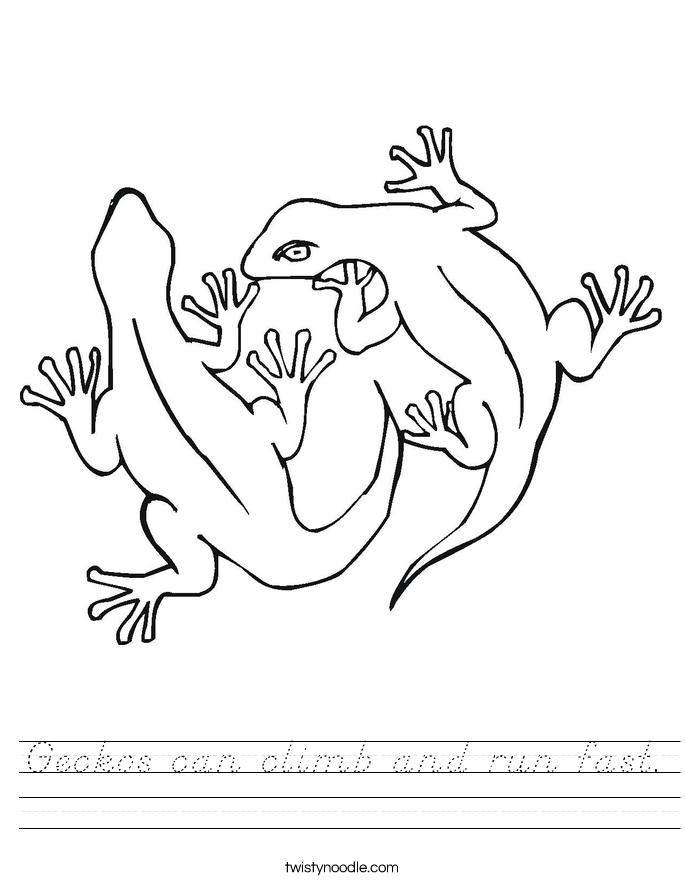 Geckos can climb and run fast. Worksheet