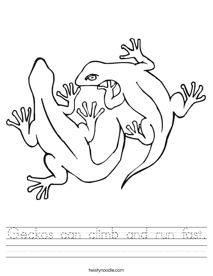 Geckos can climb and run fast. Worksheet