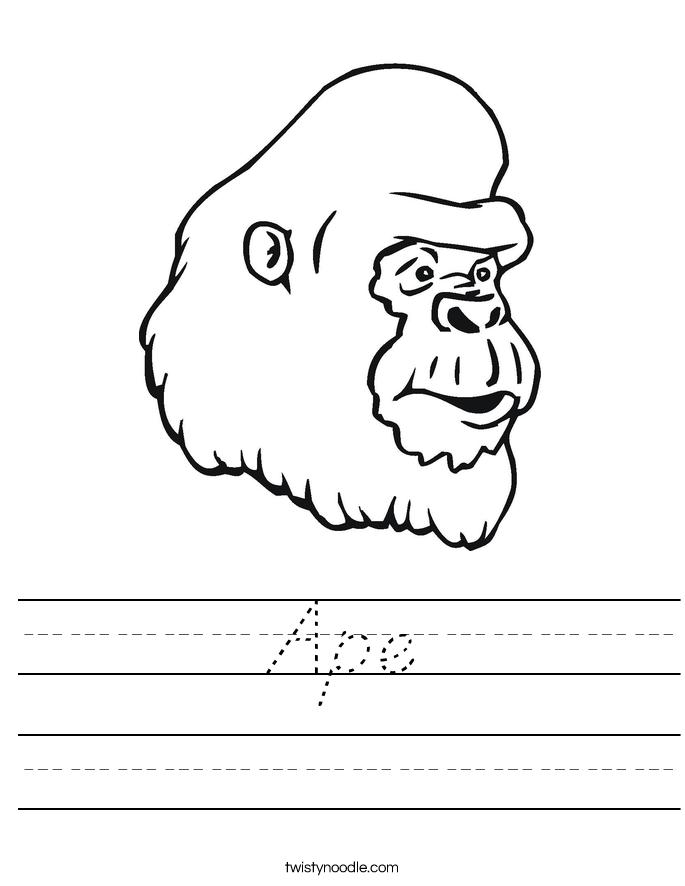 Ape Worksheet