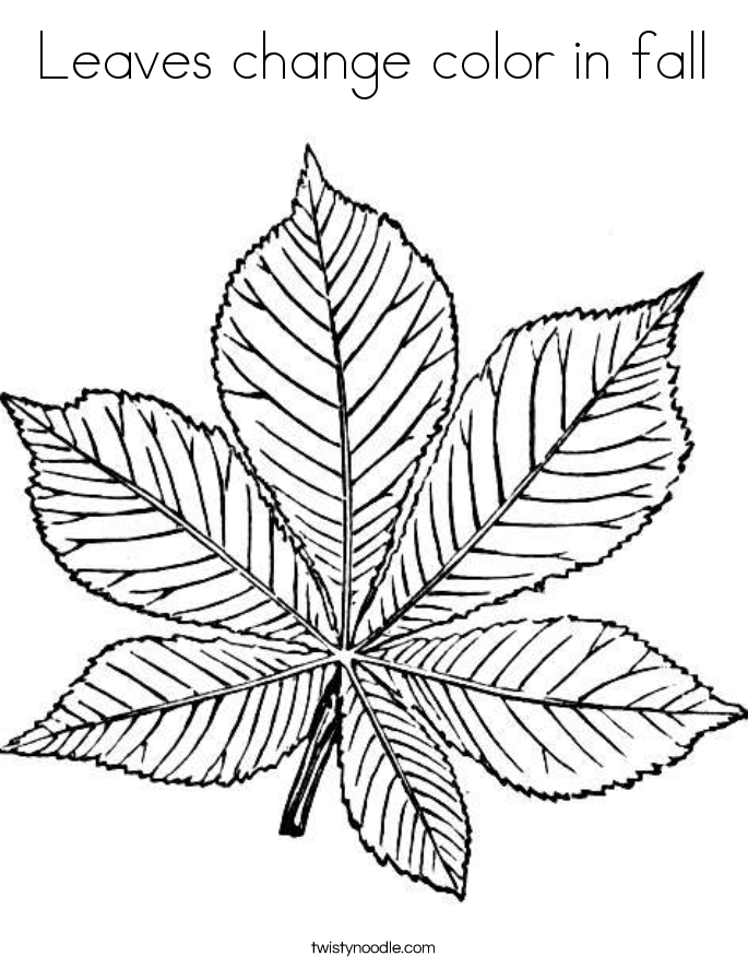 Leaves change color in fall Coloring Page