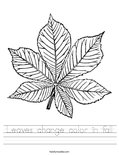 Leaves change color in fall Worksheet