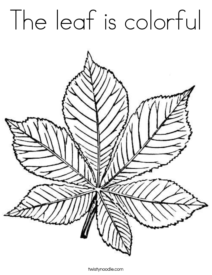 The leaf is colorful Coloring Page