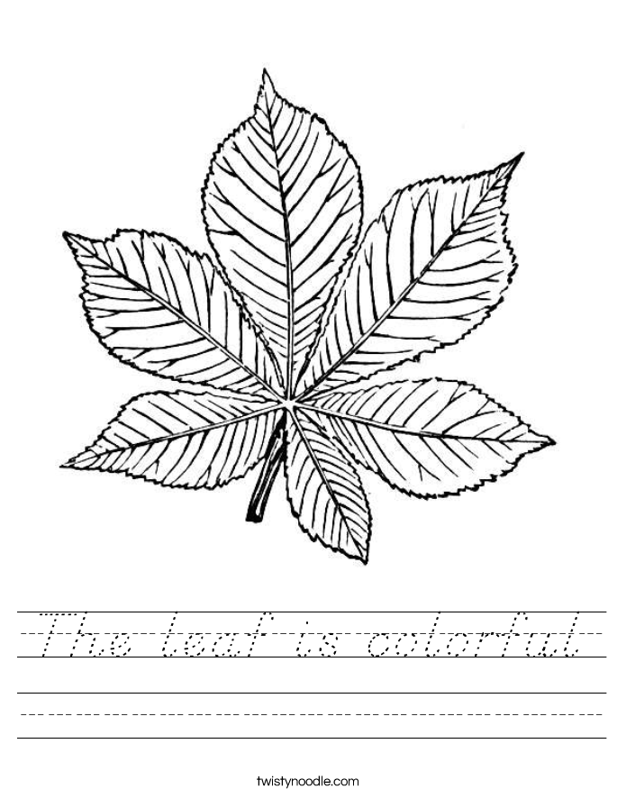 The leaf is colorful Worksheet