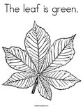 The leaf is green.Coloring Page