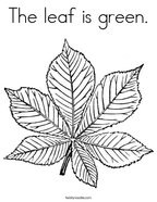 The leaf is green Coloring Page