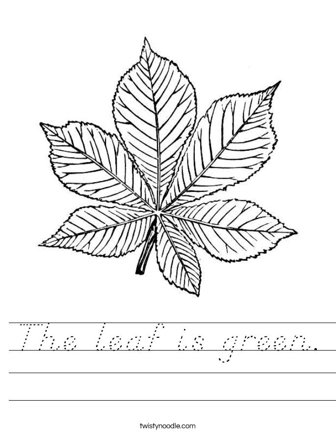 The leaf is green. Worksheet