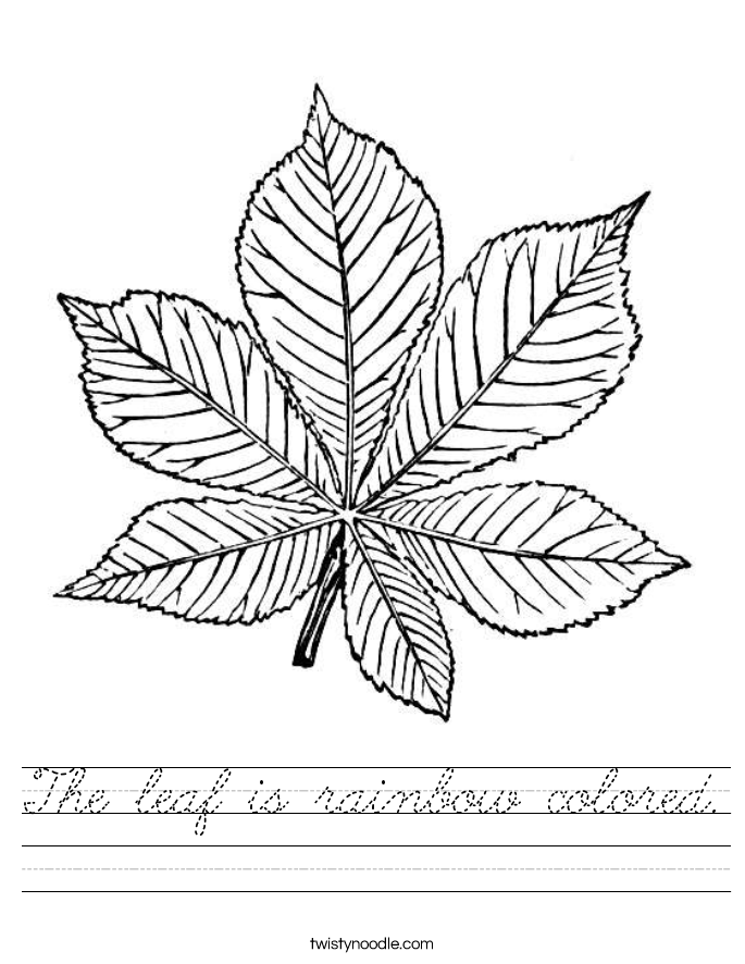 The leaf is rainbow colored. Worksheet