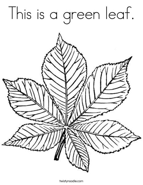 Green Leaf Coloring Page