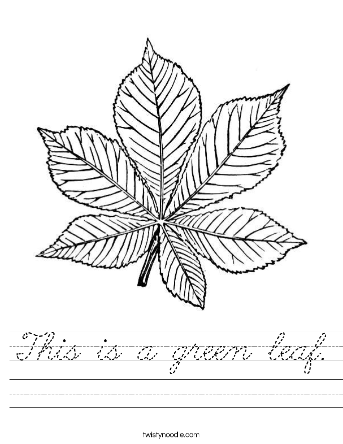 This is a green leaf. Worksheet