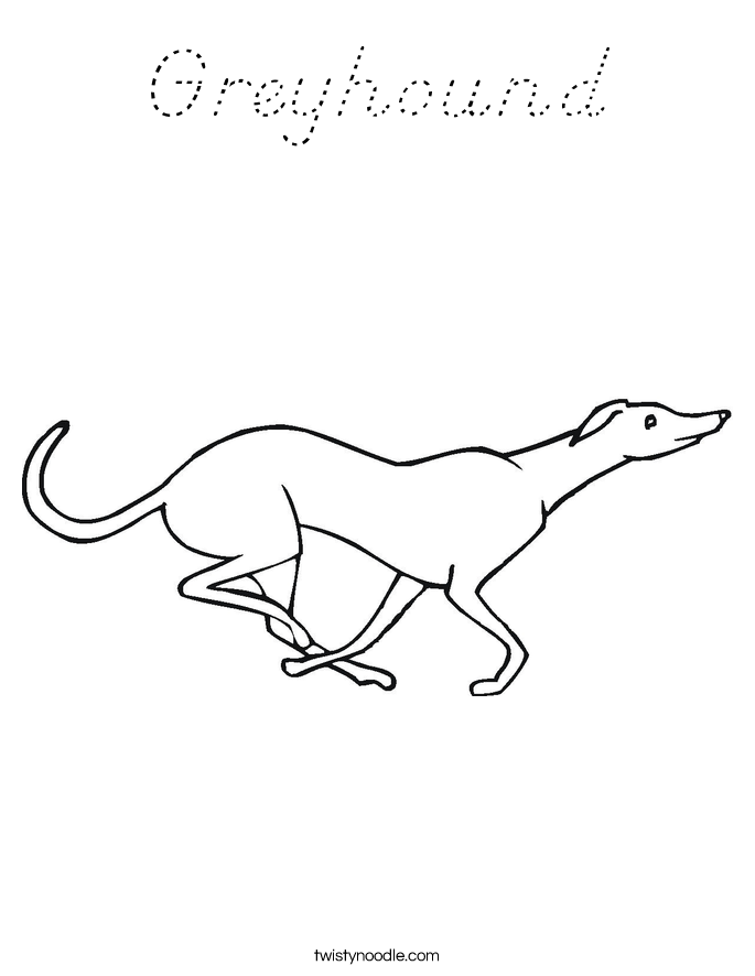 Greyhound Coloring Page D Nealian Twisty Noodle