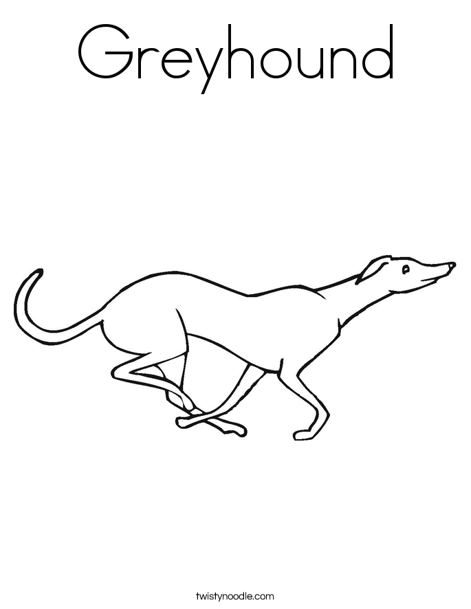 Greyhound Coloring Page Twisty Noodle