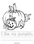 I like my pumpkin. Worksheet