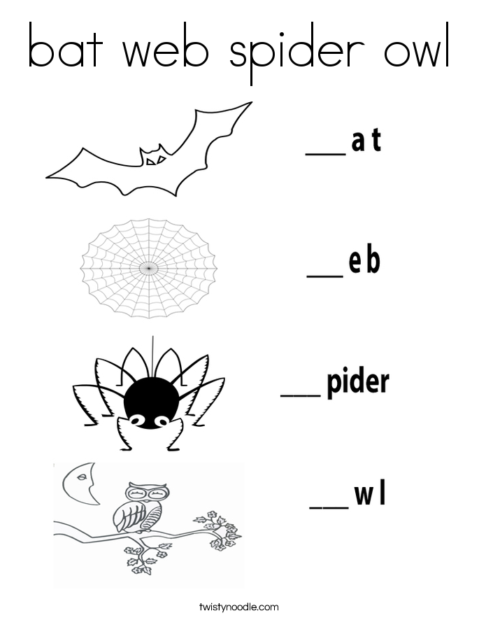 bat web spider owl Coloring Page