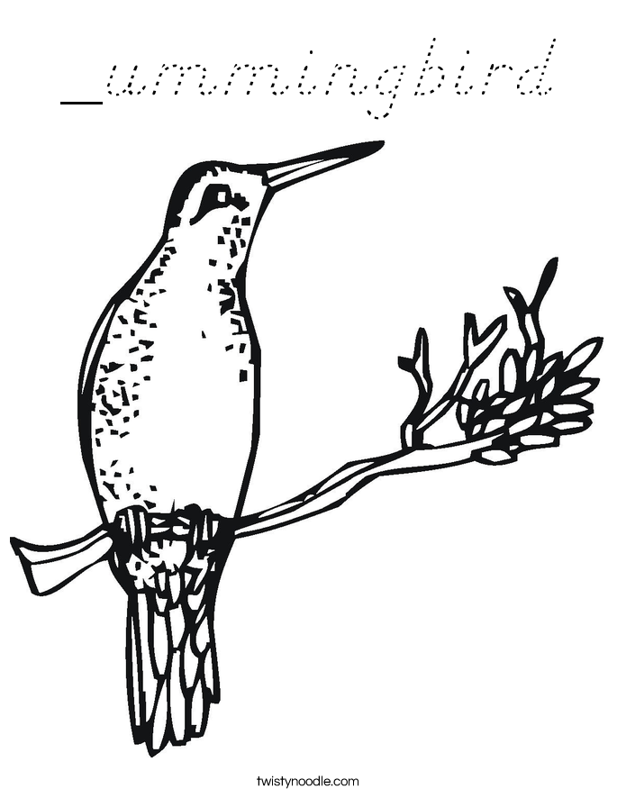 _ummingbird Coloring Page