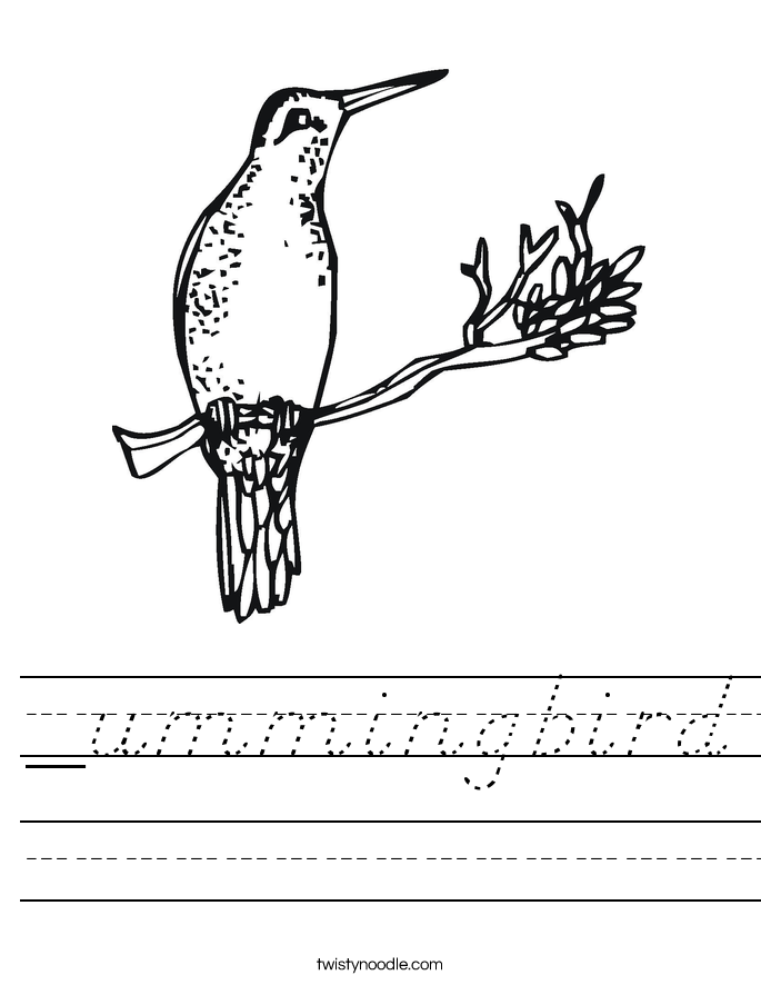 _ummingbird Worksheet