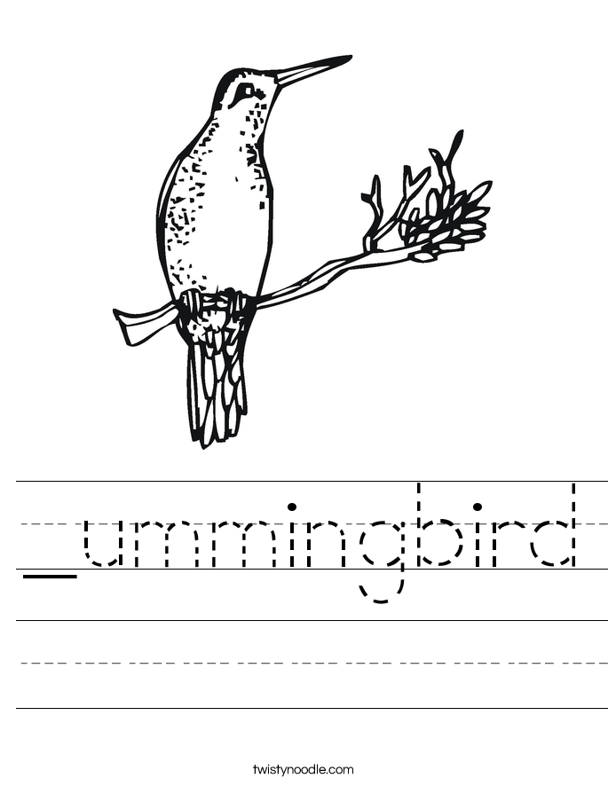 _ummingbird Worksheet