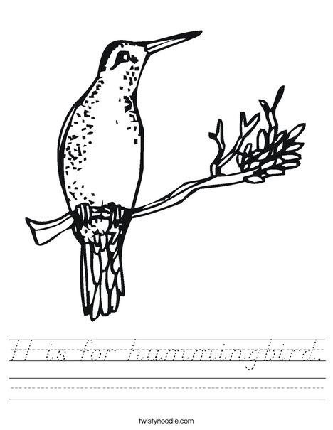 hummingbird Worksheet
