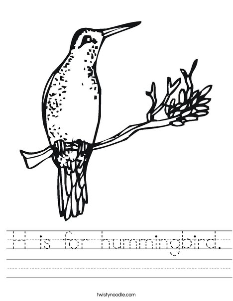 hummingbird Worksheet