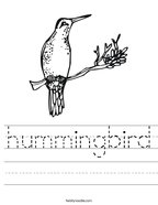 hummingbird Handwriting Sheet