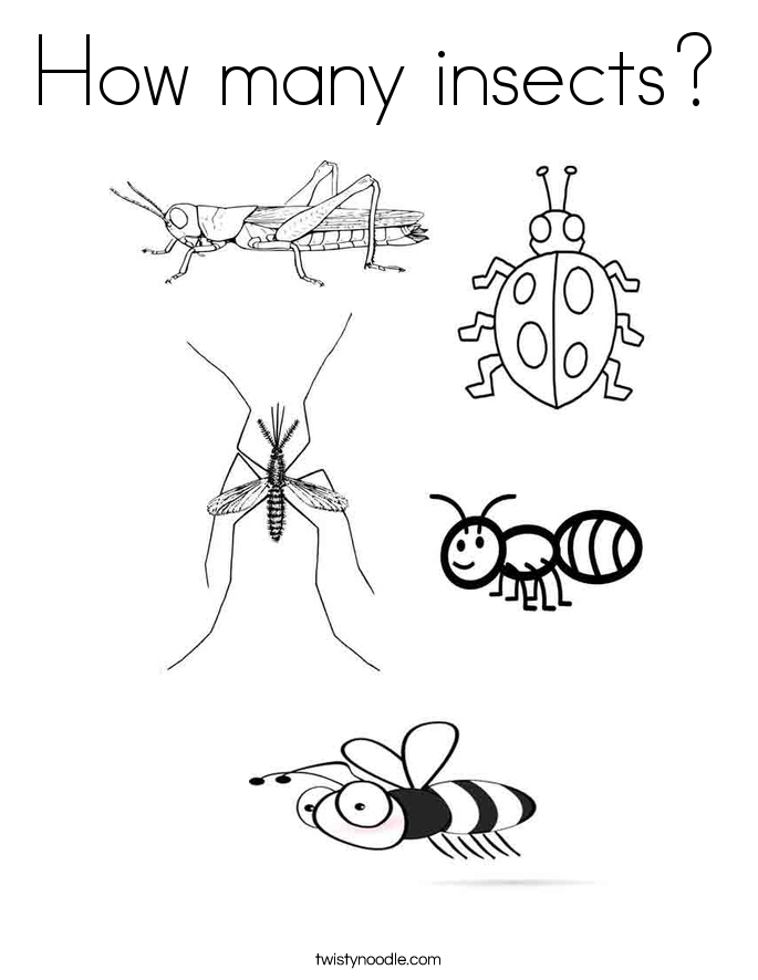 How many insects? Coloring Page