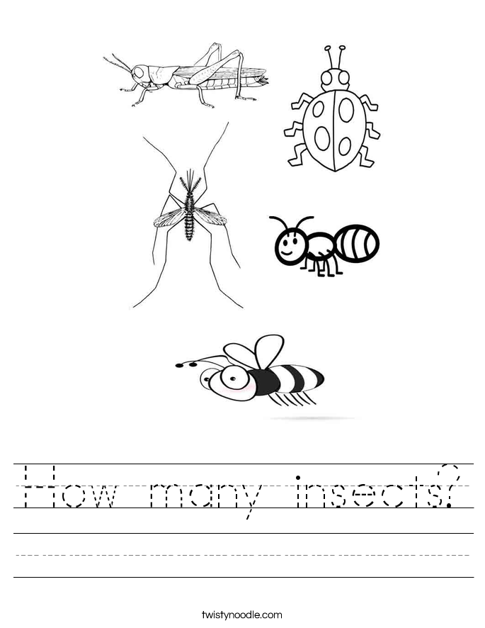 How many insects? Worksheet