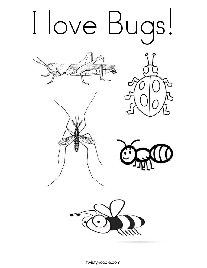 I love Bugs! Coloring Page
