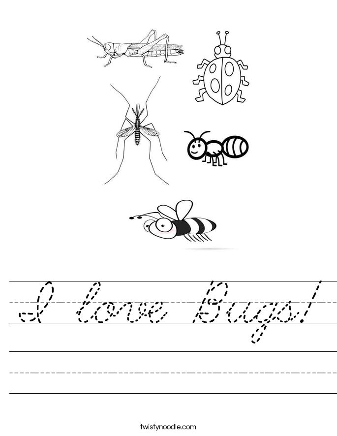 I love Bugs! Worksheet