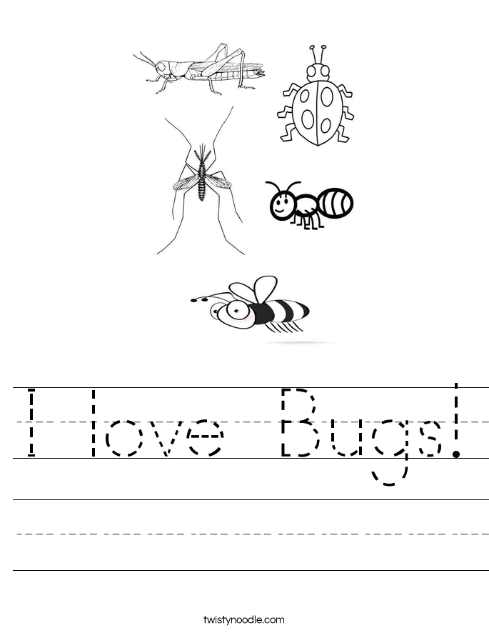 I love Bugs! Worksheet
