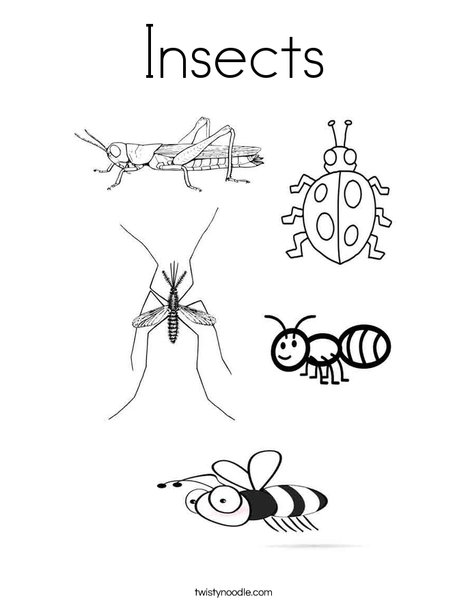 Incroyable Insects Coloring Page