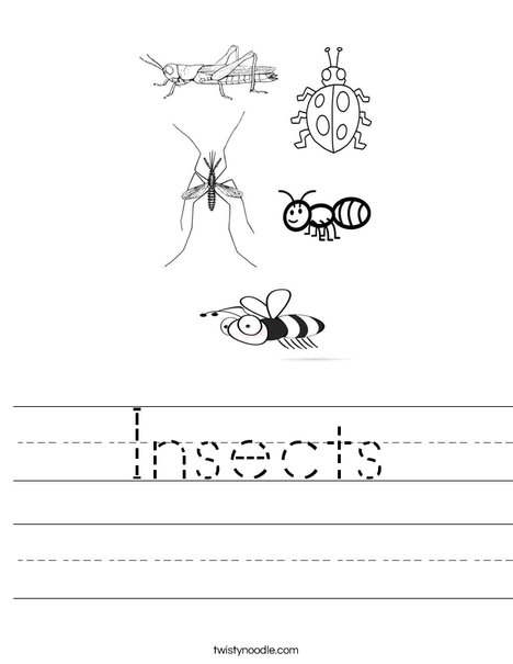 Insects Worksheet - Twisty Noodle