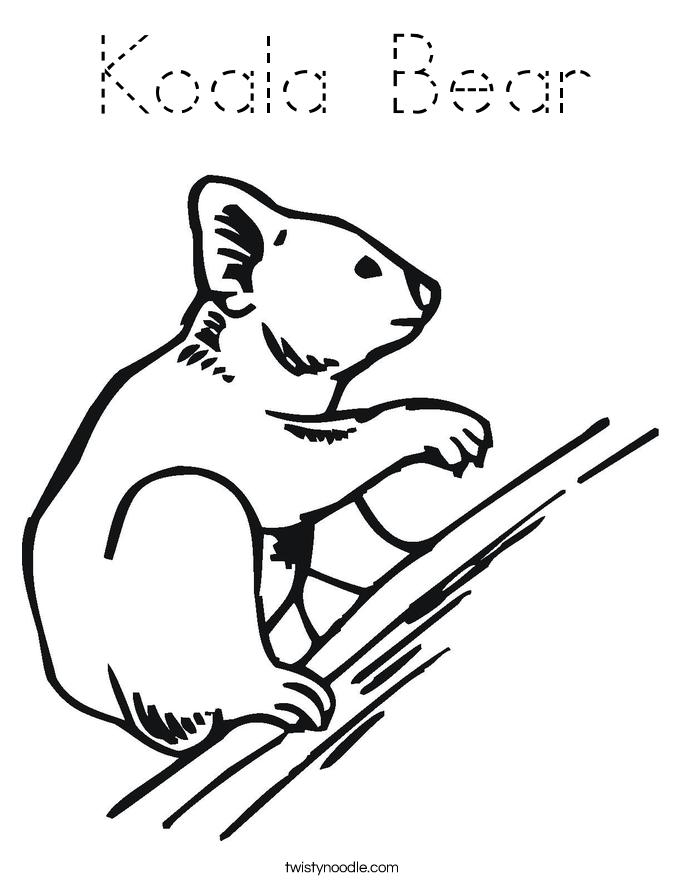 koala bear coloring pages - koala bear coloring page tracing twisty noodle
