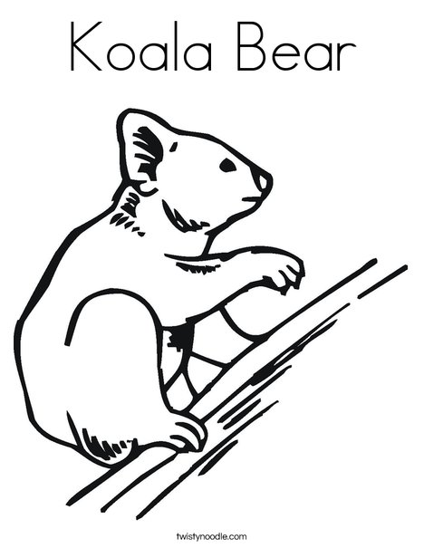 Koala Bear Coloring Page Twisty Noodle