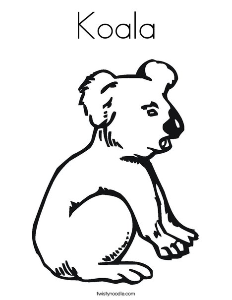 Koala Coloring Page Twisty Noodle