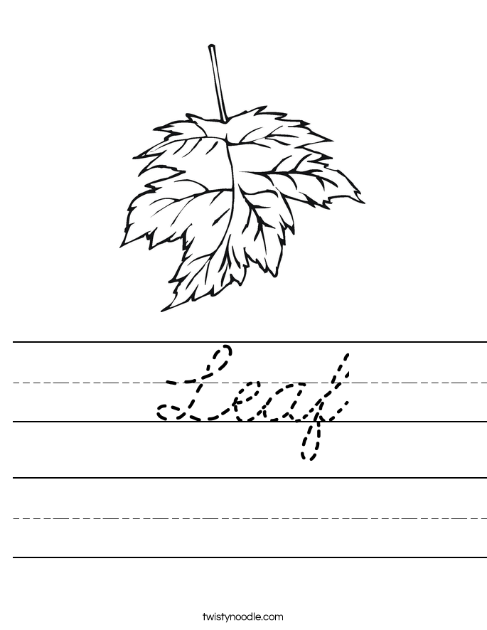 Leaf Worksheet