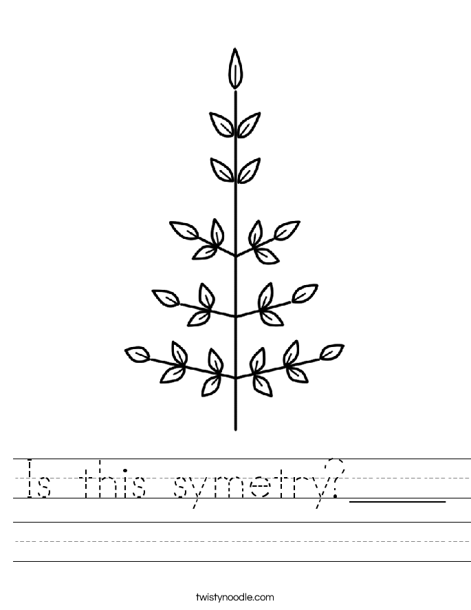 Is this symetry?____ Worksheet