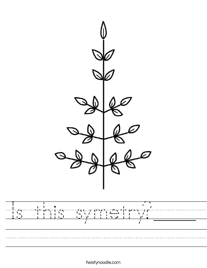 Is this symetry?____ Worksheet