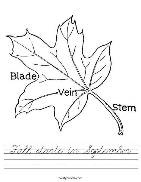 Leaf with Veins Worksheet