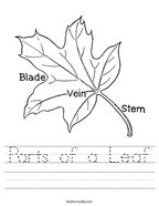 Parts of a Leaf Handwriting Sheet