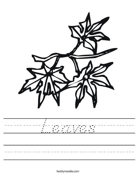 Leaves Worksheet