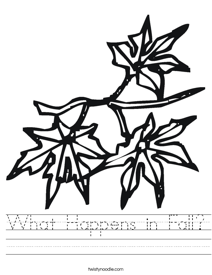 What Happens in Fall? Worksheet
