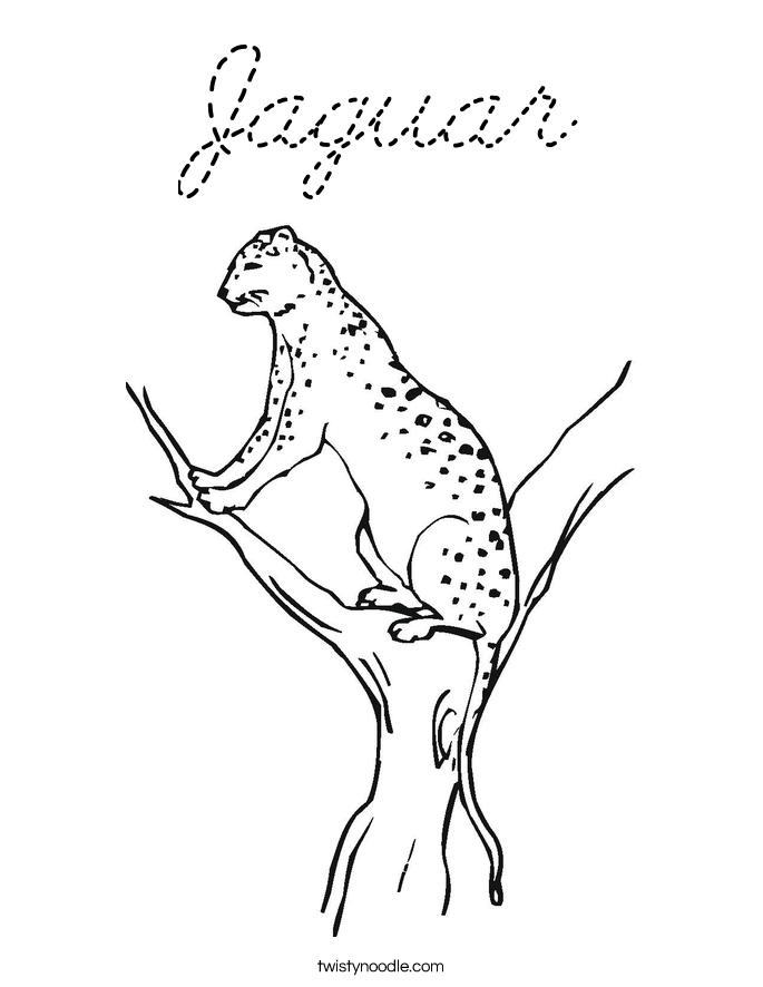 jaguar coloring page - cursive