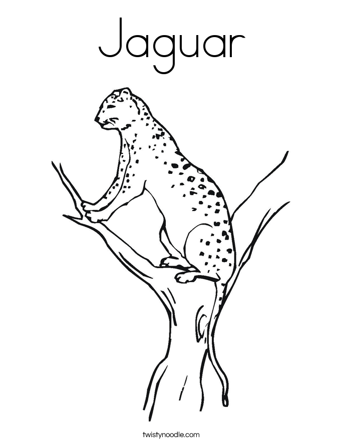 Jaguar Coloring Page