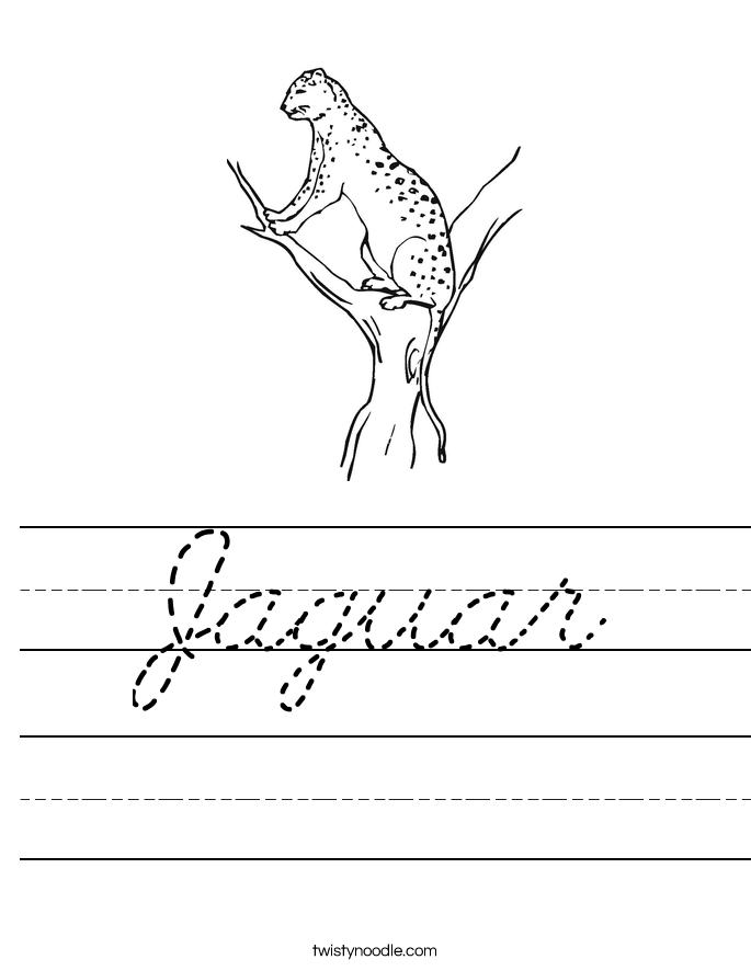 Jaguar Worksheet