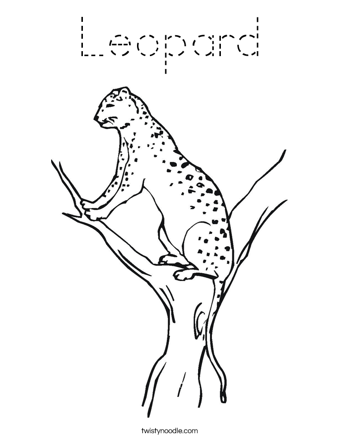 Leopard Coloring Page Tracing Twisty Noodle