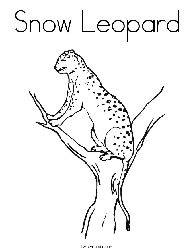Animal Jam Coloring Pages Snow Leopard : Snow leopard coloring page twisty noodle