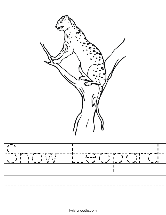 Snow Leopard Worksheet